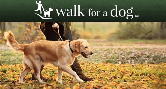 Walk for a Dog App: Help Your Local Shelters By Simply Walking