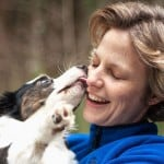 Dog Lovers Are Healthier:  WHY?