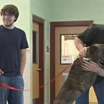 True Dog Love: After 9 Years Boxer Reunites With Owner!
