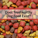 Dog Food Dilemma:  The Harsh Reality – Will It Ever Stop?